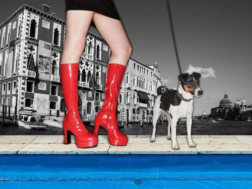 dogsandshoes_03